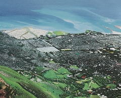 Port au Prince vista